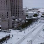 ワンフェス2014冬