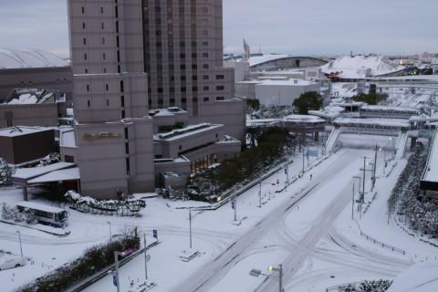 ホテル客室からの眺めです。今後ワンフェスに行くことは何度かあると思いますが、幕張がこんな雪景色になることはもうなさそうですね。ないと思いたい。